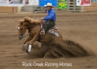 Rock Creek Reining